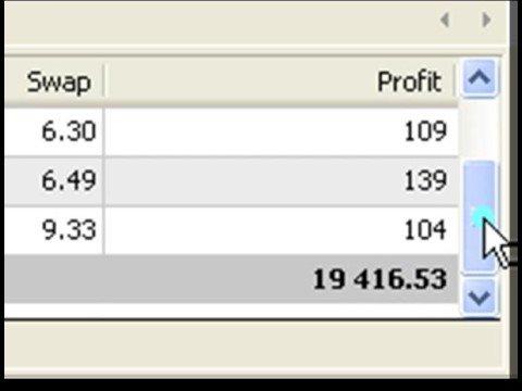 1000% plus Profit Video - See How I Did It
