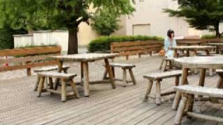 信州大学のキャンパス風景をお届けする好評第3弾!今回は、松本キャン...