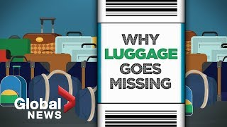 Lost luggage: What happens to your baggage after check-in