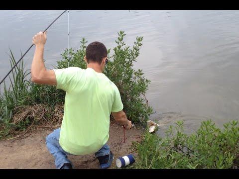 Armand Bayou Alligator Gar (caught while catfishing)