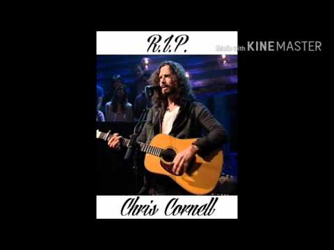 R.I.P. Chris Cornell - The Last Remaining Light (Audioslave)