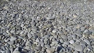 Находки на чёрном море Аквамарин 200