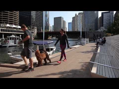 Drone footage shows Chicago's completed river walk
