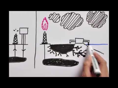 ¿Porqué es importante el caso Chevron?