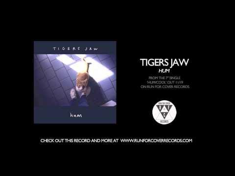 """Tigers Jaw stream new single, """"Hum"""" - Alternative Press"""