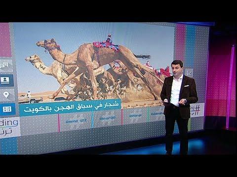 ناقة من تدخل أولا.. شجار بين متنافسين في سباق الهجن بالكويت   #بي_بي_سي_ترندينغ  - نشر قبل 52 دقيقة