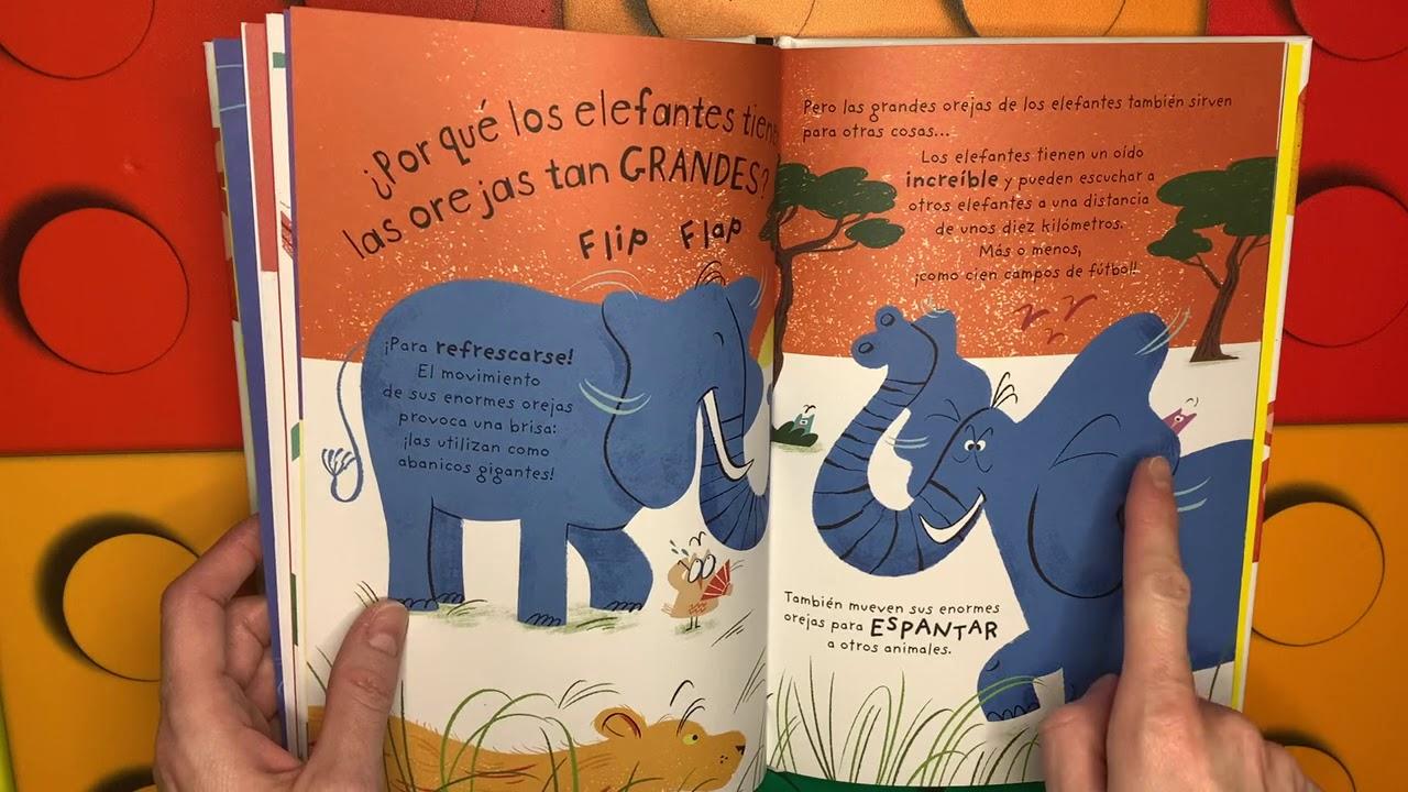 Cuentos infantiles en español; ¿Puedo hacerle cosquillas a un tigre? libro infantil en español.