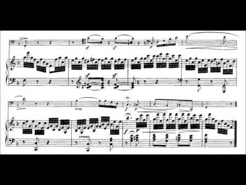 L.V.Beethoven 12 Variations on ''Ein Mädchen oder Weibchen'' from ''Die Zauberflöte'', op 66