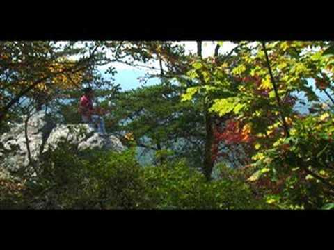 Alabama Nature Scenes