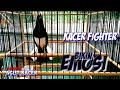 Kacer Fighter Cari Lawan Bikin Emosi Kacer Lain Pancingan Kacer Gacor  Mp3 - Mp4 Download