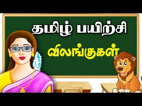 Payirchi -  2   Learn Animals   Learn Tamil for Kids   Preschool Learning Videos