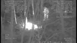 Flashlight signals lead Coast Guard to overdue hiker