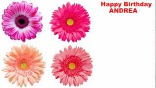Andrea - español - flowers - Happy Birthday