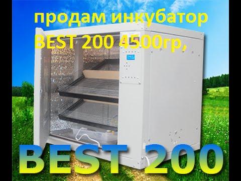 инкубатор автоматический купить в украине