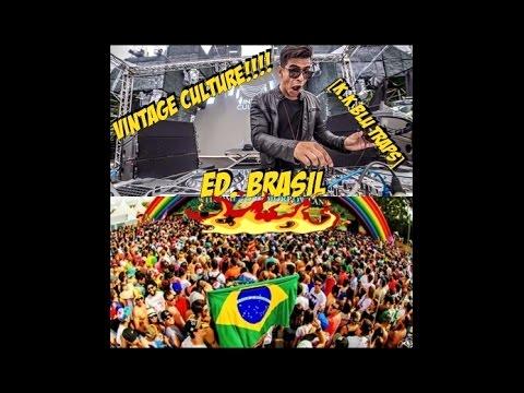 [W . G] - Vintage Culture EDC BRASIL 2015