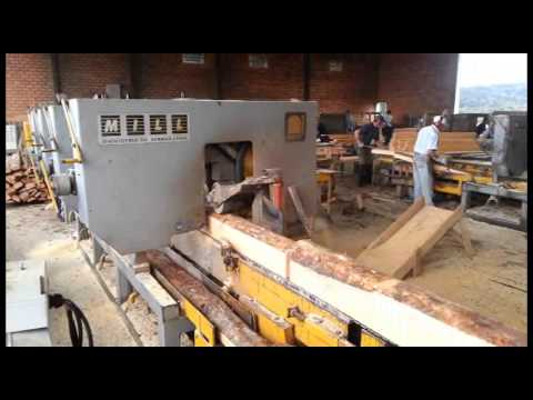 Automatic Sawmill To Cut Pine