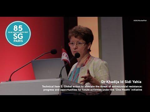 Dr Khadija Id Sidi Yahia adresses the Technical Item I on antimicrobial resistance