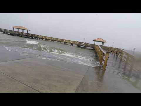 Hurricane Barry Storm Surge In Gulfport , Ms | Mississippi Wildlife