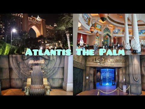 Atlantis Hotel || The Palm Dubai || Palm Jumairah || The Lost Chambers Aquarium