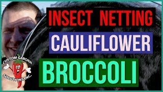 Broccoli And Cauliflower Insect Netting and Shade Cloth - Cabbage Worms and Heat
