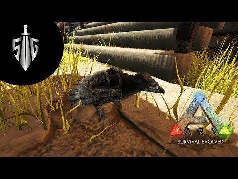 Minik Argentavis  I  Ark Survival Evolved #23
