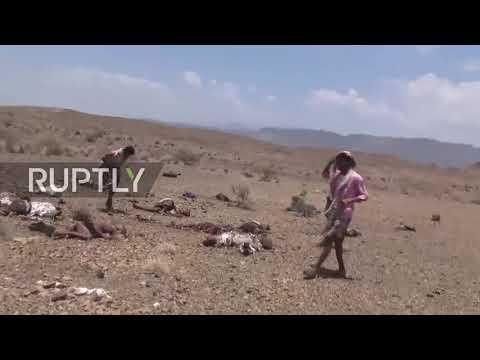 Yemen: 20 dead as Saudi-led airstrike hits southwestern Yemen - reports *GRAPHIC*