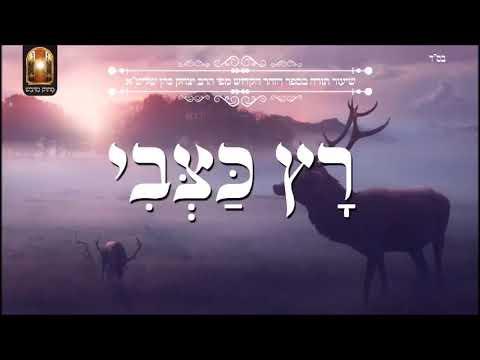 רץ כצבי   שיעור תורה בספר הזהר הקדוש מפי הרב יצחק כהן שליטא