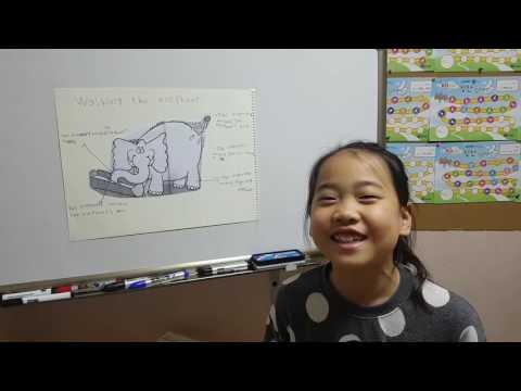 Washing the elephant. Lucy