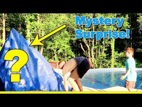 HUGE SURPRISE! This blows their mind.