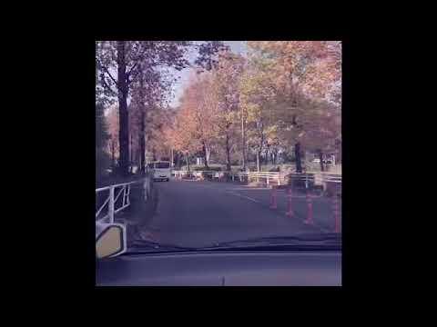 Autumn Drive 2019 Japan