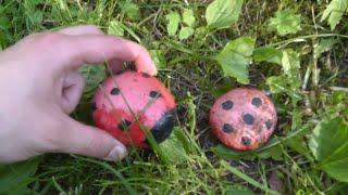 видео Акриловый камень своими руками для украшения садового участка