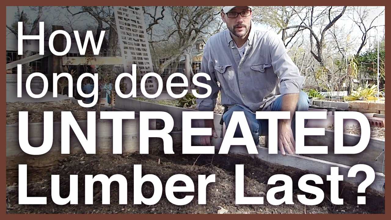 How Long Does Untreated Lumber Last As A Garden Bed?