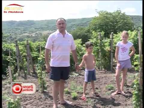 Asa nu l ai mai vazut! Deputatul Igor Dodon, la iaz cu copii si nepotii in satul de bastina