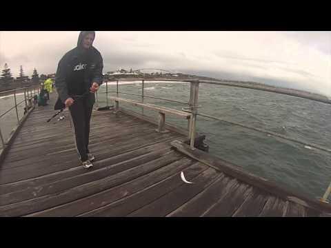 Salmon | Port Noarlunga Jetty