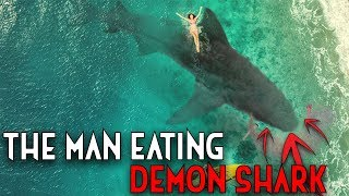 The Giant Man-Eating Black Demon Shark In Mexico