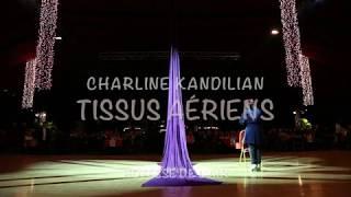 Charline Kandilian - Tissu aérien - Hôtesse de l'air rétro