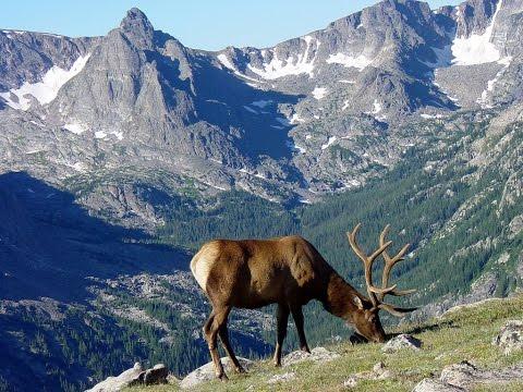 [ WATCH ] Wonderfull Rocky Mountain