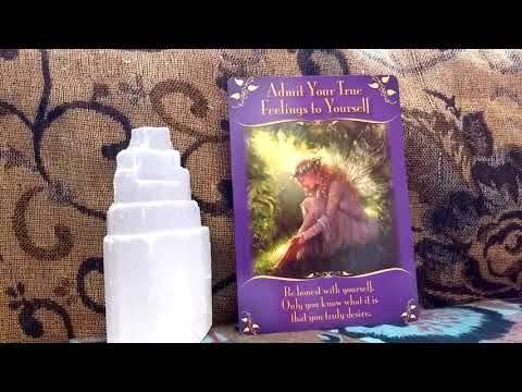 daily oracle card reading 2nd December by fairy willow with magical messages from the fairies tarot