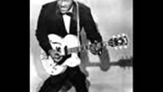 YouTube動画:Chuck Berry - Too Much Monkey Business
