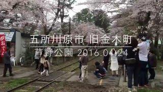 芦野公園 五所川原市 旧金木町 2016.4.24  4K VIDEO