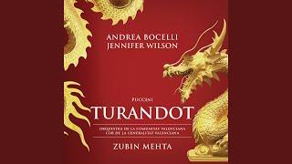 Puccini: Turandot / Act 3 - Tu che di gel sei cinta