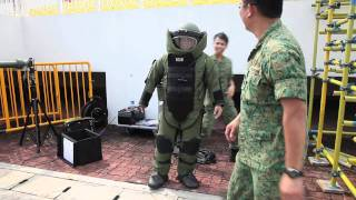 mrbrown at NDP 2011: Robots and Bomb Suits