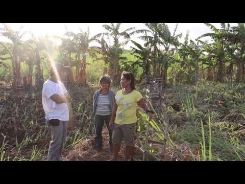ALTER TRADE - PHILIPPINES - Interview with Robin Roth, GEPA Fair Trade