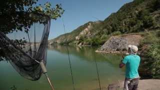 Диалоги о рыбалке. Испанский карп.