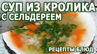 Рецепты блюд. Суп из кролика с сельдереем рецепт приготовления