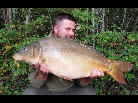 Carp fishing in France  10/10/2017 - l'étang les grands champs with Danny Stanmore, peche a la carpe