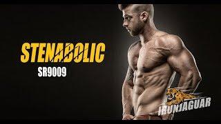 Stenabolic (SR9009) - The Ultimate Guide