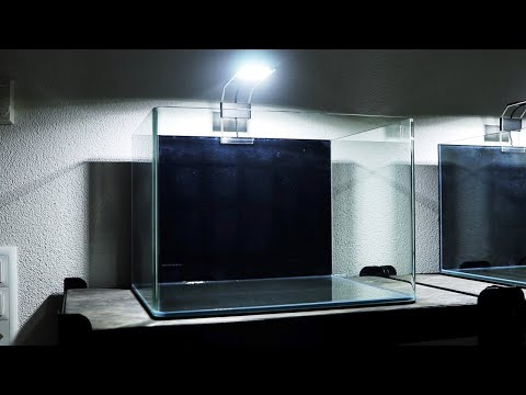How To Attach DIY Aquarium Fish Tank Background | Step By Step | Easy