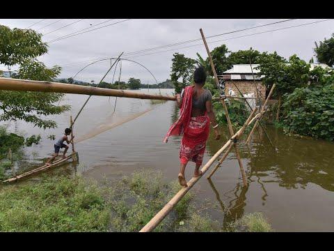 أخبار عالمية   العثور على 25 جثة بعد انحسار فيضانات #الهند