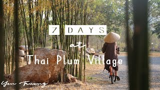 7 Days at Thai Plum Village